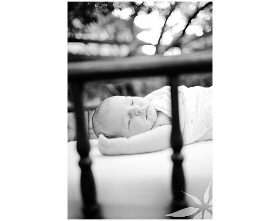 Boulder Children's Portrait Photographer 007