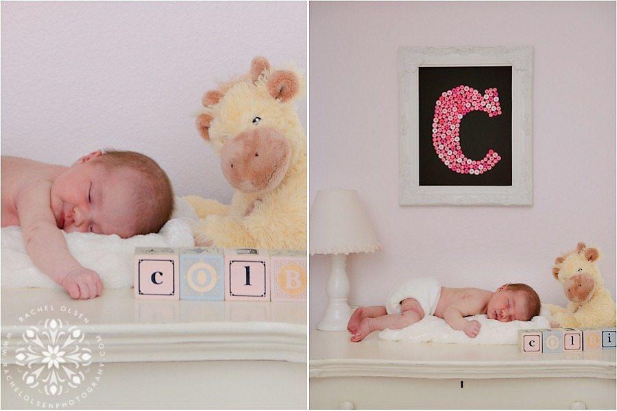 Newborn Photographer Fort Collins_0001